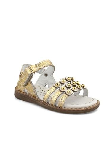 Cicibebe Deri Kız Çocuk Sandalet Bronz
